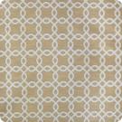B2029 Camel Fabric