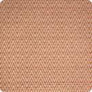 B2081 Spice Fabric