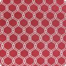 B2104 Firecracker Fabric