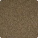 B2503 Amber Fabric