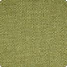 B2526 Citrus Fabric
