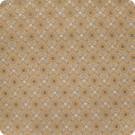 B2541 Latte Fabric