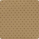 B2817 Brown Fabric