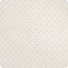 B3081 Neutral Fabric