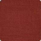 B3204 Paprika Fabric