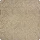 B3310 Tortoise Fabric