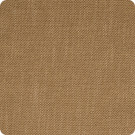 B3620 Honey Fabric
