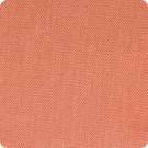 B3631 Salmon Fabric