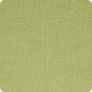 B3633 Lime Fabric
