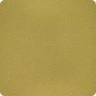 B3764 Wasabi Fabric