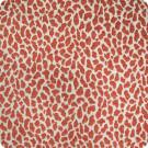 B4999 Guava Fabric