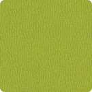 B5265 Gemini Green Apple Fabric