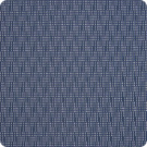 B5373 Blueberry Fabric