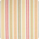 B5704 Citrus Fabric