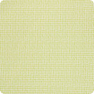 B5721 Acid Green Fabric