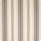 B5865 Zebra Fabric