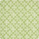 B5920 Fern Fabric