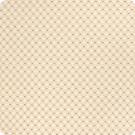 B6016 Ivory Fabric
