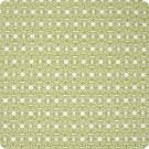 B6169 Grass Fabric