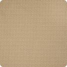 B6205 Sycamore Fabric