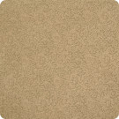 B6426 Almond Fabric