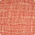 B6616 Persimmon Fabric