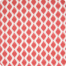 B6670 Watermelon Fabric