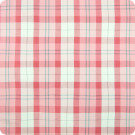 B6673 Pink Fabric
