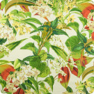 B6799 Rainforest Fabric