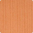 B6977 Burnt Orange Fabric