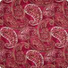 B7220 Passion Fabric