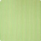 B7297 Green Fabric