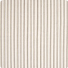 B7789 Latte Fabric