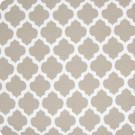 B7816 Bisque Fabric