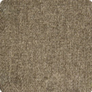 B7831 Chocolate Fabric