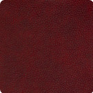 B8700 Shiraz Fabric