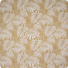 B8855 Golden Fabric