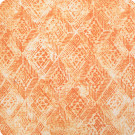 B8906 Coral Fabric