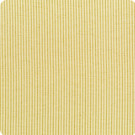 B9570 Golden Fabric