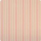B9601 Blossom Fabric