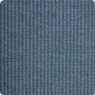 B9819 Indigo Fabric