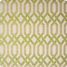 B9875 Apple Fabric