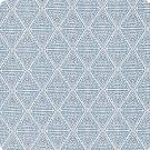F1310 Indigo Fabric