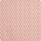 F1345 Shrimp Fabric