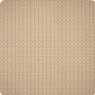 F1638 Sand Fabric