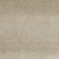 F1787 Wheat Fabric