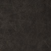 F2073 Charcoal Fabric