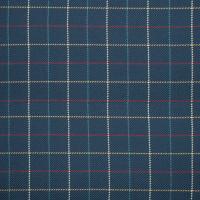 S1162 Navy Fabric