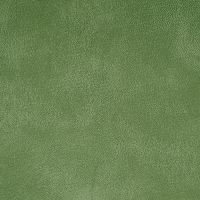 71957 Yorktown Pale Green Fabric