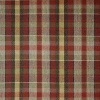 A1573 Spice Fabric